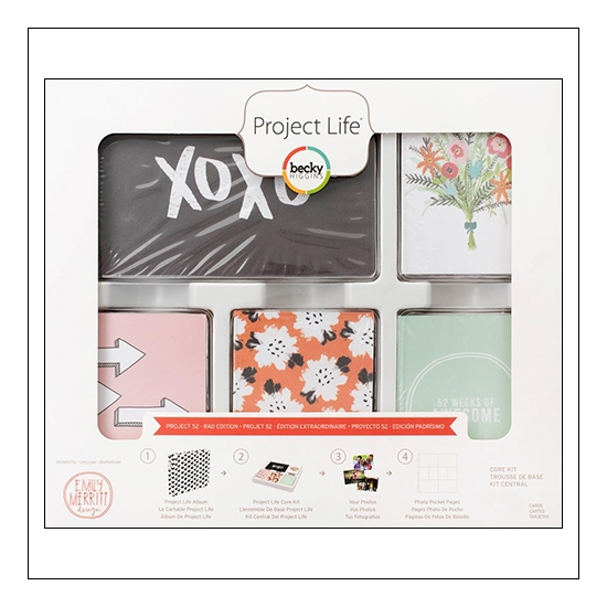 American Crafts Project Life Core Kit 4 x 6-inch 52 week Cards Project 52 Rad Edition Collection by Emily Merritt
