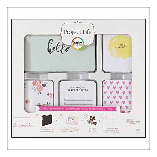 American Crafts Project Life 4x6 inch Core Kit Card Set Project 52 Fresh Edition Collection by Liz Tamanaha