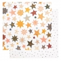 Crate Paper Specialty Paper Transparent Sheet Glimmer with Glitter Accents Shine Collection by Maggie Holmes