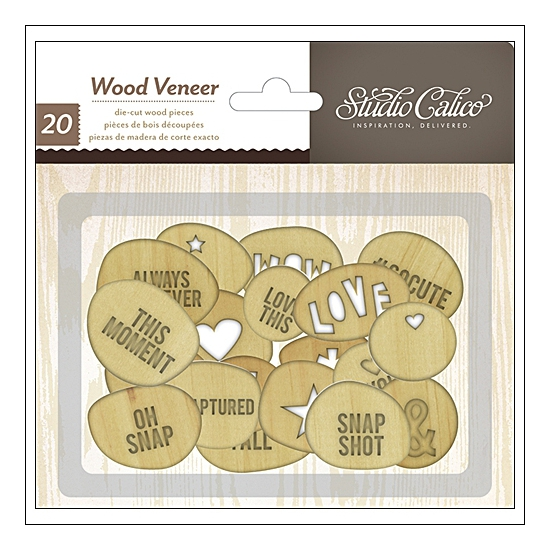 Studio Calico Wood Veneer Circles with Words Printshop Collection