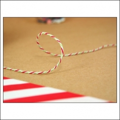 Whisker Graphics Divine Twine Holiday