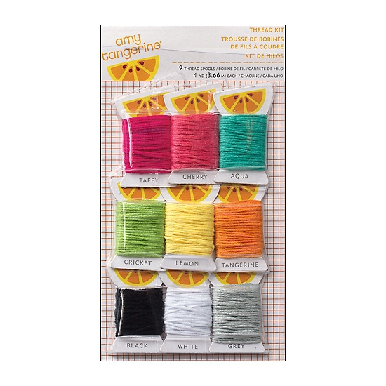 American Crafts Mulitcolored Thread Plus One Collection by Amy Tangerine