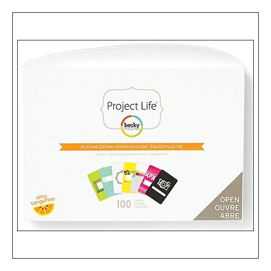American Crafts Project Life Mini Kit Plus One Collection by Amy Tangerine/Becky Higgins