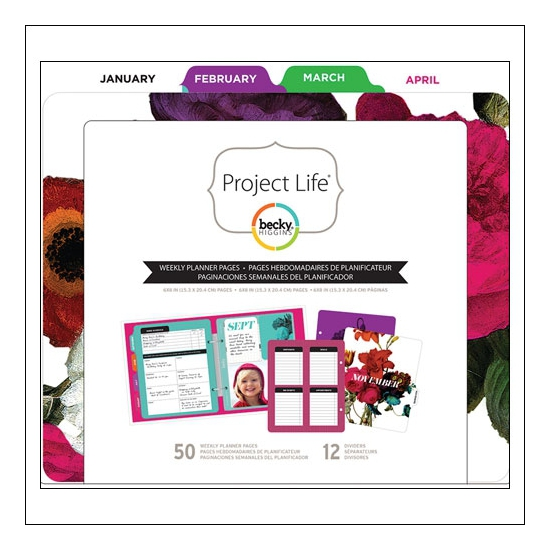 American Crafts Project Life Filler Pack Weekly by Becky Higgins