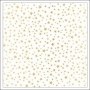 Crate Paper Vellum Paper Sheet Gold Foil Stars Make A Wish Confetti Collection by Maggie Holmes