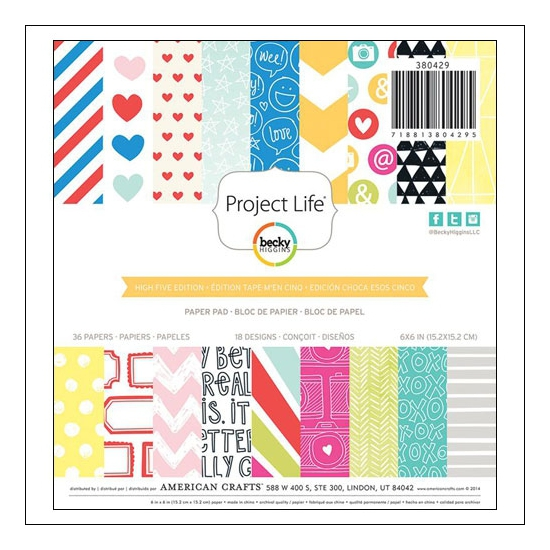 American Crafts Project Life Paper Pad 6x6 inches High Five Collection by Lili Niclass