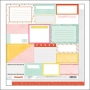 American Crafts Paper Sheet Pretty Packages Fine and Dandy Collection by Dear Lizzy
