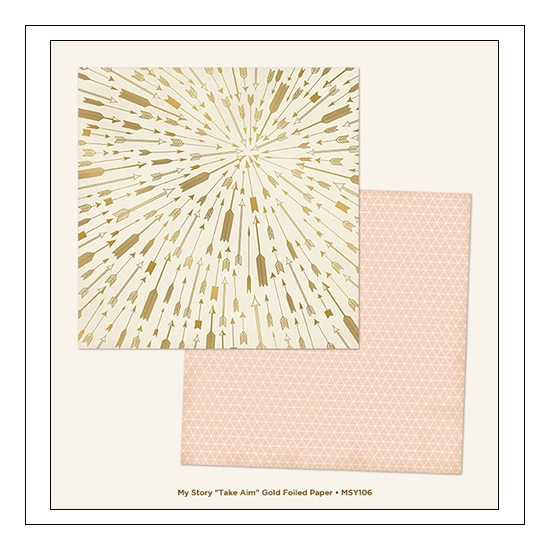 My Minds Eye Cardstock Paper Sheet Foiled Take Aim My Story Collection by Dani Mogstad