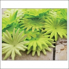 Prima Marketing E-Line Paper Flowers Confetti Mixed Green